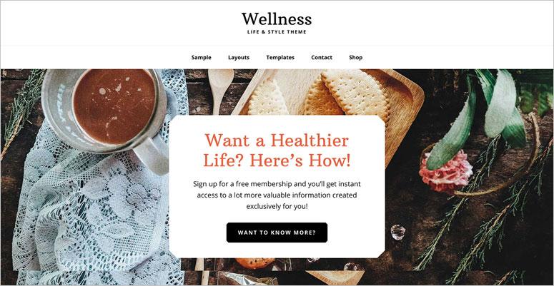 2020'nin En İyi 7 Sağlık Sektörü WordPress Temaları