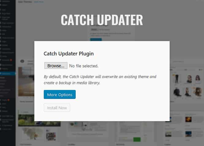 catch updater