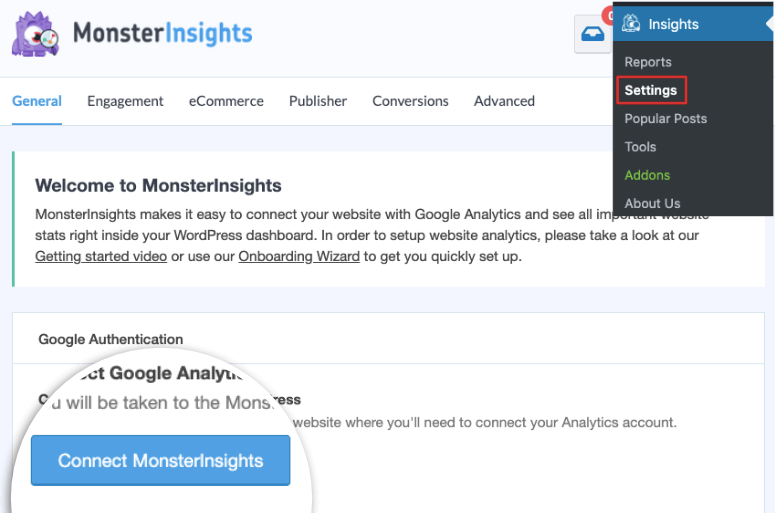 monsterinsights setup