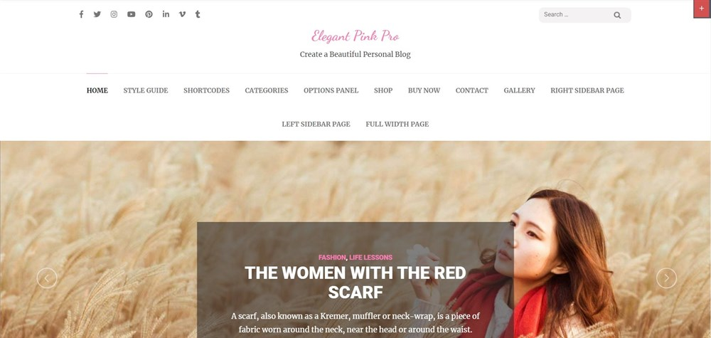 Elegant pink pro WordPress theme
