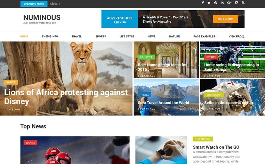 AdSense Uyumlu En İyi WordPress Teması