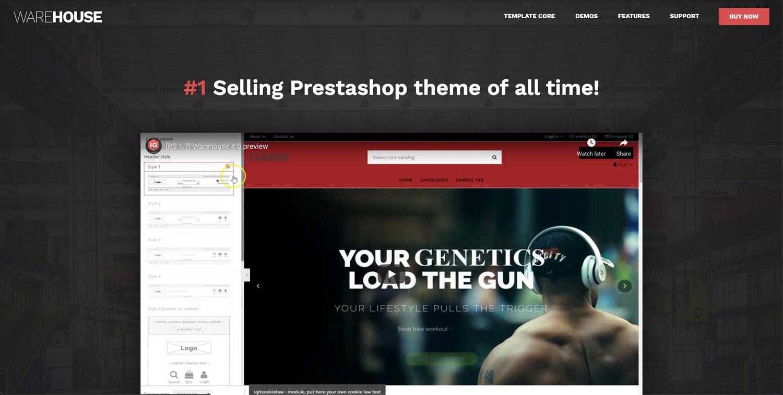 En İyi PrestaShop Temaları