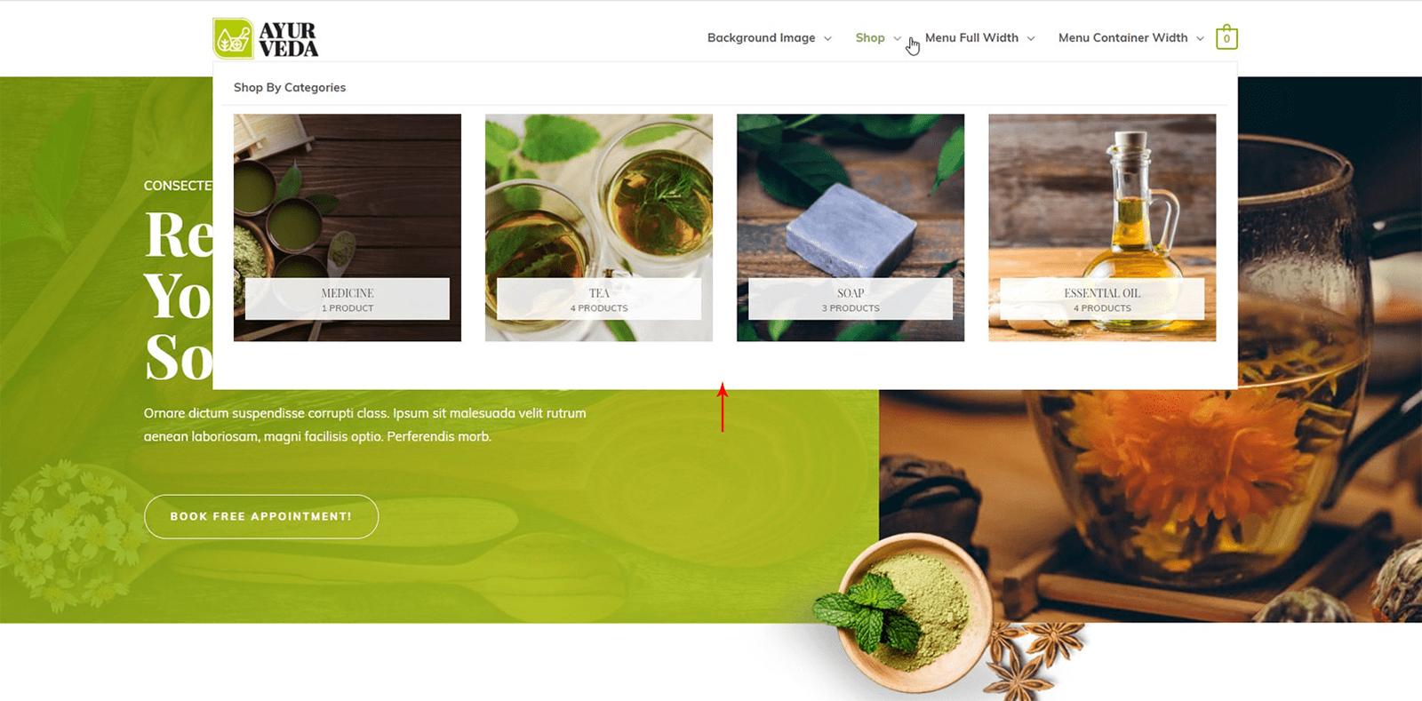 Astra WordPress Tema İncelemesi