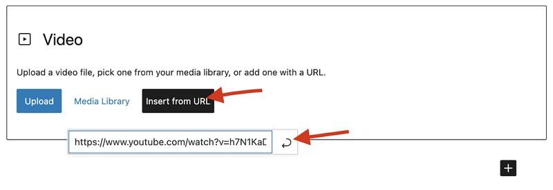 WordPress Blog Yazılarına Video Nasıl Eklenir?